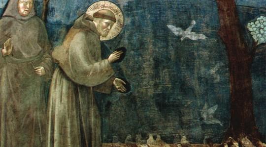 """""""Laudato Si"""", la nuova Enciclica di Papa Francesco"""