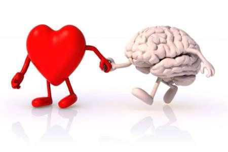 Cervello e cuore si influenzano a vicenda