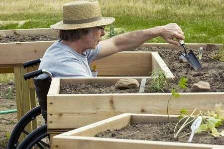 Nell'orto sociale, disabili e rifugiati insieme