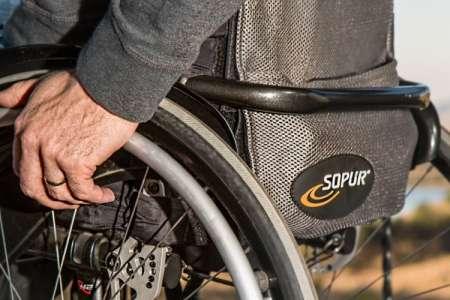 Disability Pride a Roma