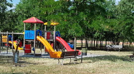 La dedica di un parco a Novarese