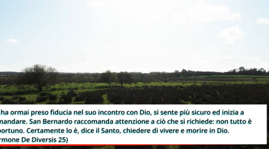 Videopreghiera: festa di san Bernardo di Chiaravalle
